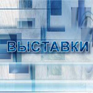 Выставки Мостовского